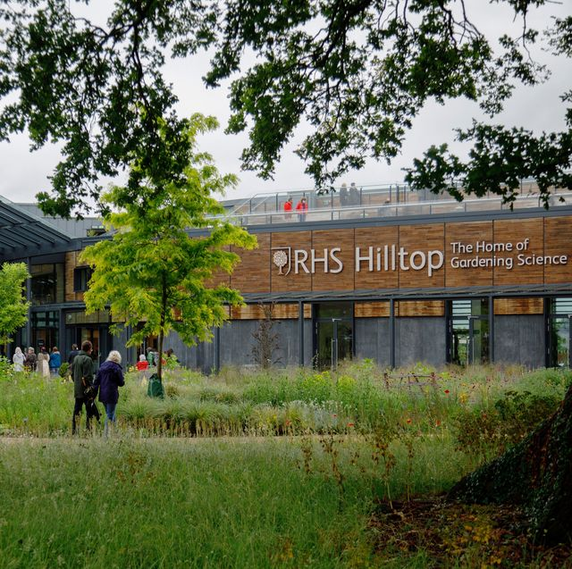 rhs reveals plans to map out 400,000 garden plants around the uk for hilltop