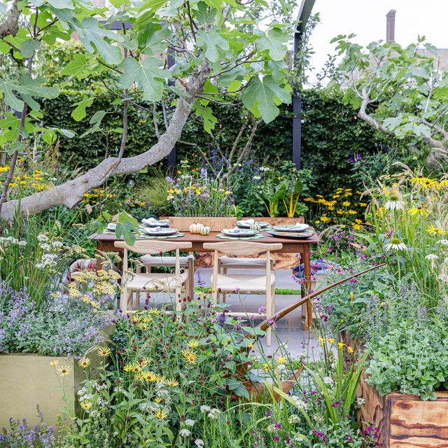 the parsley box garden designed by alan williams sponsored by parsley box sanctuary garden rhs chelsea flower show 2021 stand no 286