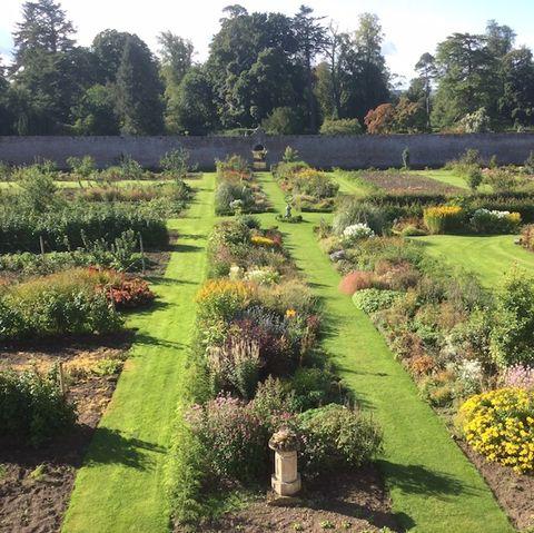 Preston Hall Walled Garden photo