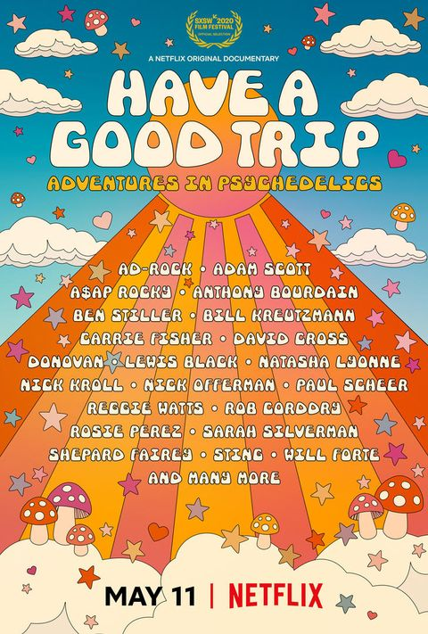 have a good trip lineup poster