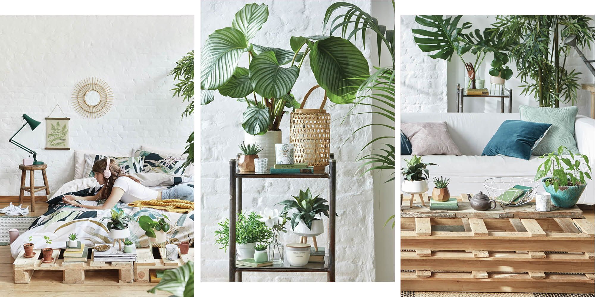 As usual, you're going to want all of Primark's new S/S homeware stuff