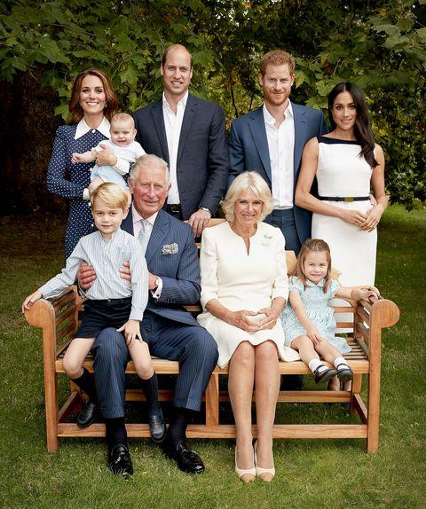Prince Charles 70th birthday portrait