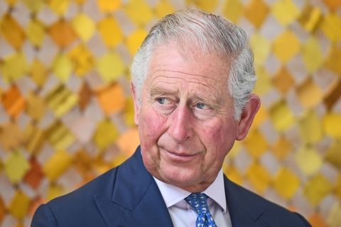 Prince Charles Seemed REALLY Annoyed During His BBC Documentary Interview