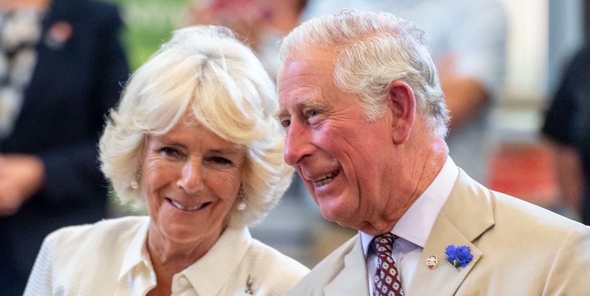 Image result for british royals visit barbados