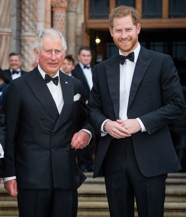 Duke of Sussex shares new Prince Archie photo to mark Prince Charles' birthday