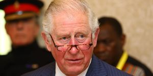 The Prince Of Wales Attends WaterAid's Water And Climate Event