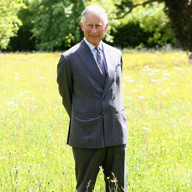 the prince of wales launches the coronation meadows initiative
