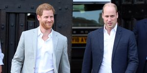 prins-william-prins-harry-hofhouding