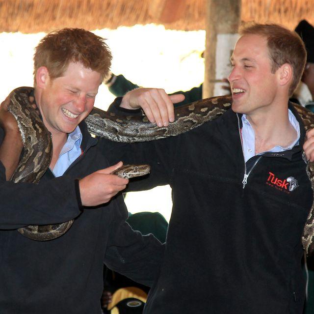 Prince William and Harry Visit Botswana - Day 2