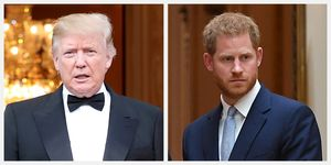 prince harry donald trump state visit