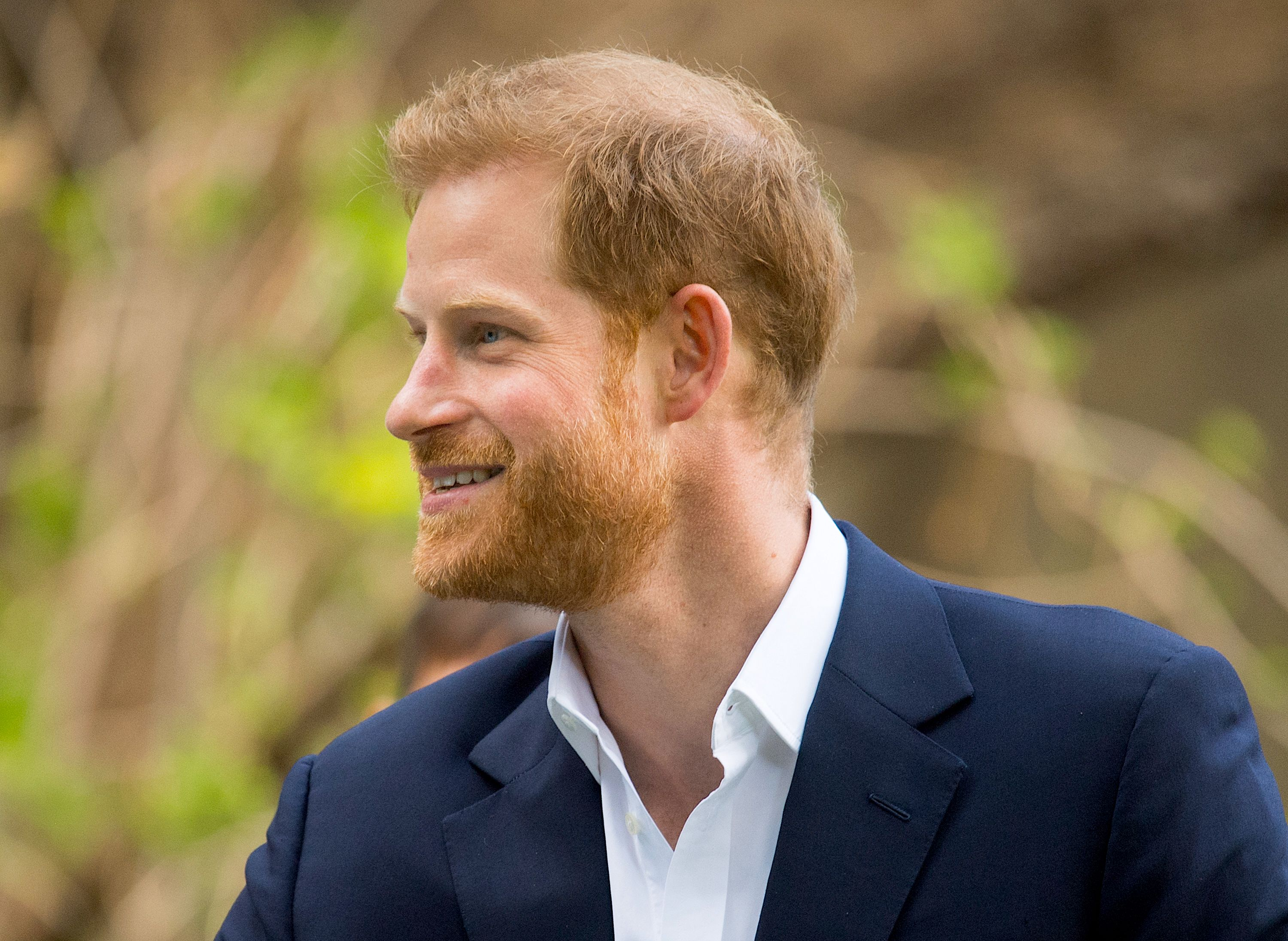 Turns Out Harry Always Had His Eye On A Specific, Non-Royal Career