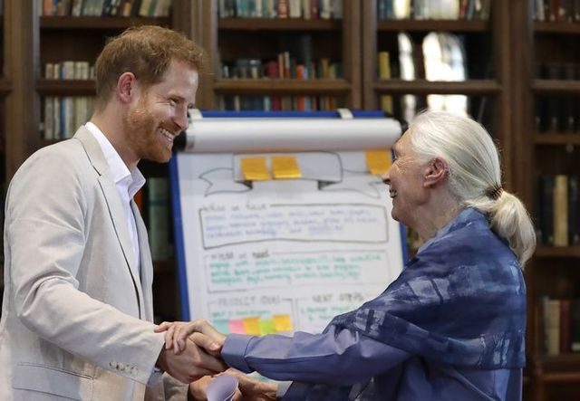 The Duke Of Sussex Attends Dr. Jane Goodall's Roots & Shoots Global Leadership Meeting