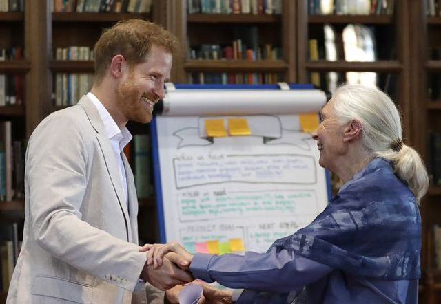 See All the Best Photos of Prince Harry Meeting with Legendary Environmentalist Jane Goodall