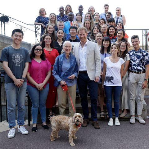 prince harry dog Attends Dr. Jane Goodall's Roots & Shoots Global Leadership Meeting