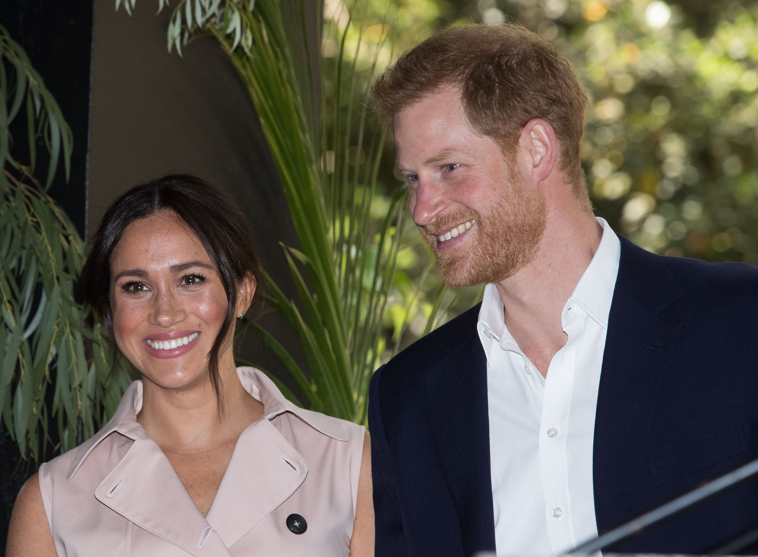 Sussex Fans Launch Touching Campaign to Plant 10,000 Trees in Harry's and Meghan's Names