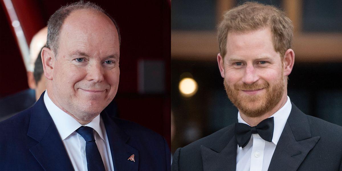 """Prince Albert """"Completely Understands"""" Prince Harry's Push for Privacy - HarpersBAZAAR.com"""