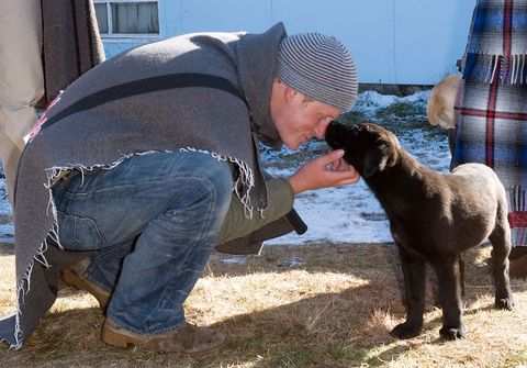 Prince Harry bonds with puppy in Lesotho