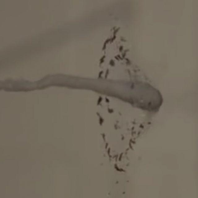 prince rupert drop shatters a bullet