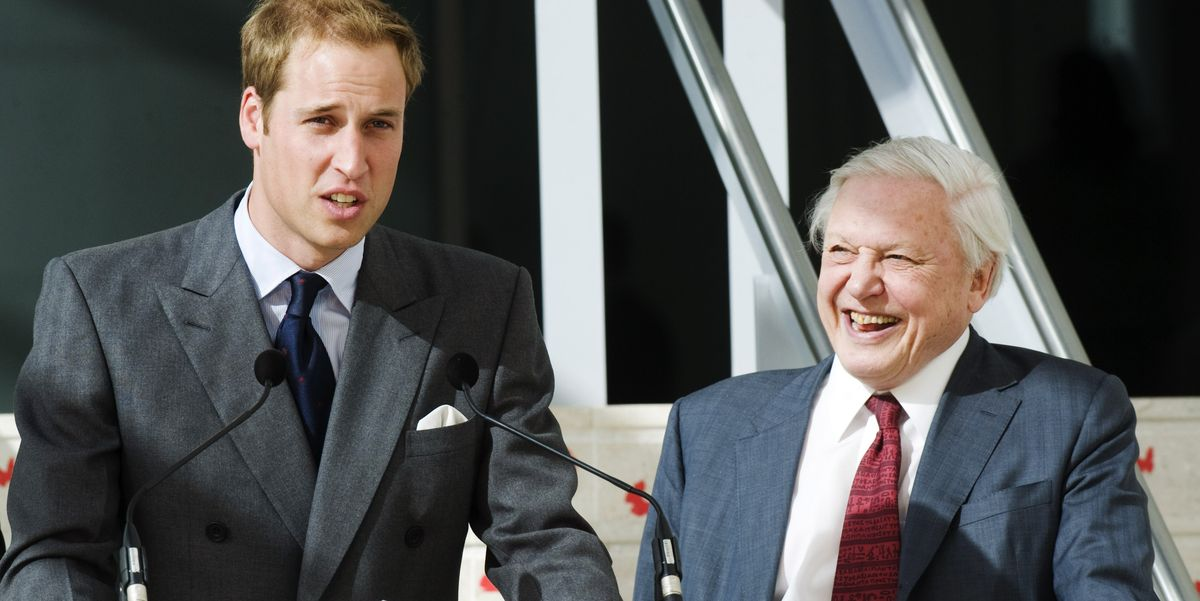 Prince William To Interview David Attenborough At Davos