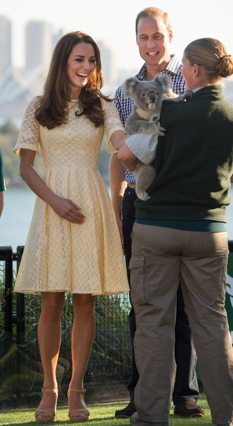 the duke and duchess of cambridge tour australia and new zealand   day 14