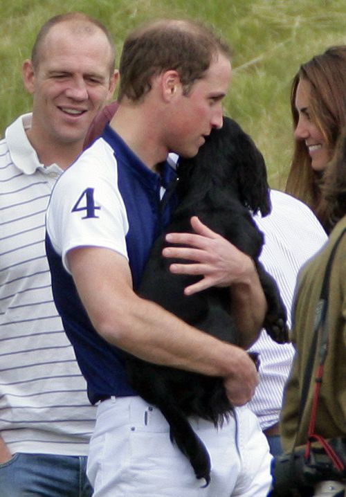Kate Middleton and Prince William Are 'Besotted' With a New Puppy