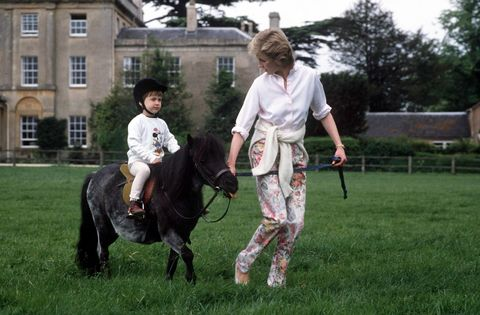 Diana And William Pony Highgrove