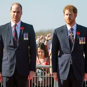 vimy, france   april 09 l r prince william, duke of cambridge and prince harry arrive at the canadian national vimy memorial on april 9, 2017 in vimy, france the prince of wales, the duke of cambridge and prince harry along with canadian prime minister justin trudeau and french president francois hollande attend the centenary commemorative service at the canadian national vimy memorial the battle of vimy ridge was fought during ww1 as part of the initial phase of the battle of arras although british led it was mostly fought by the canadian corps photo by jack taylorgetty images