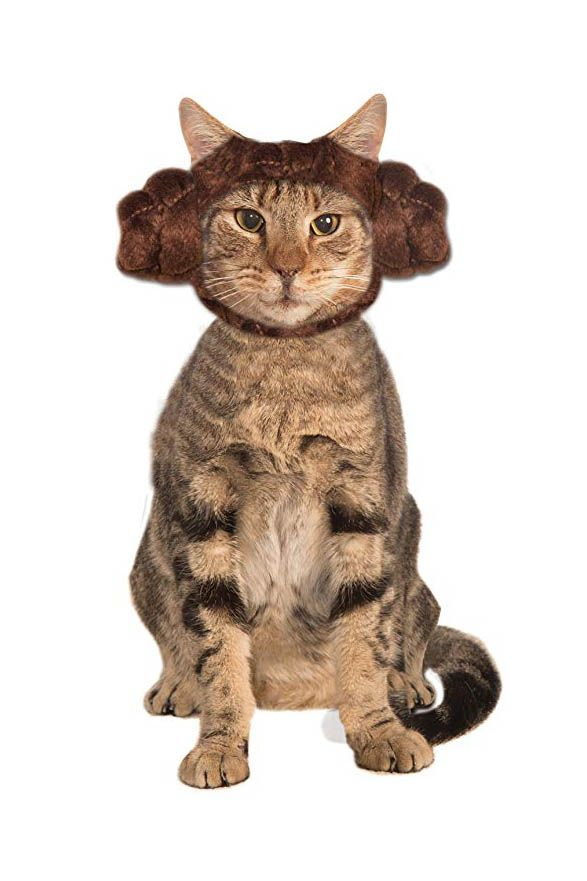 princess leia cat costume  sc 1 st  Country Living Magazine & 30 Cute Pet Costumes for Dogs u0026 Cats - Best Halloween Pet Costume Ideas