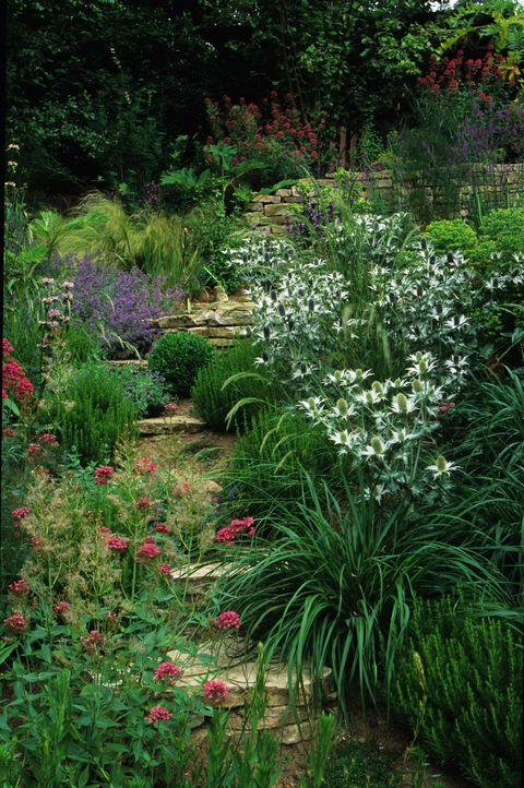 Sloping Garden Ideas 5 Things To Consider Terraces Levelling