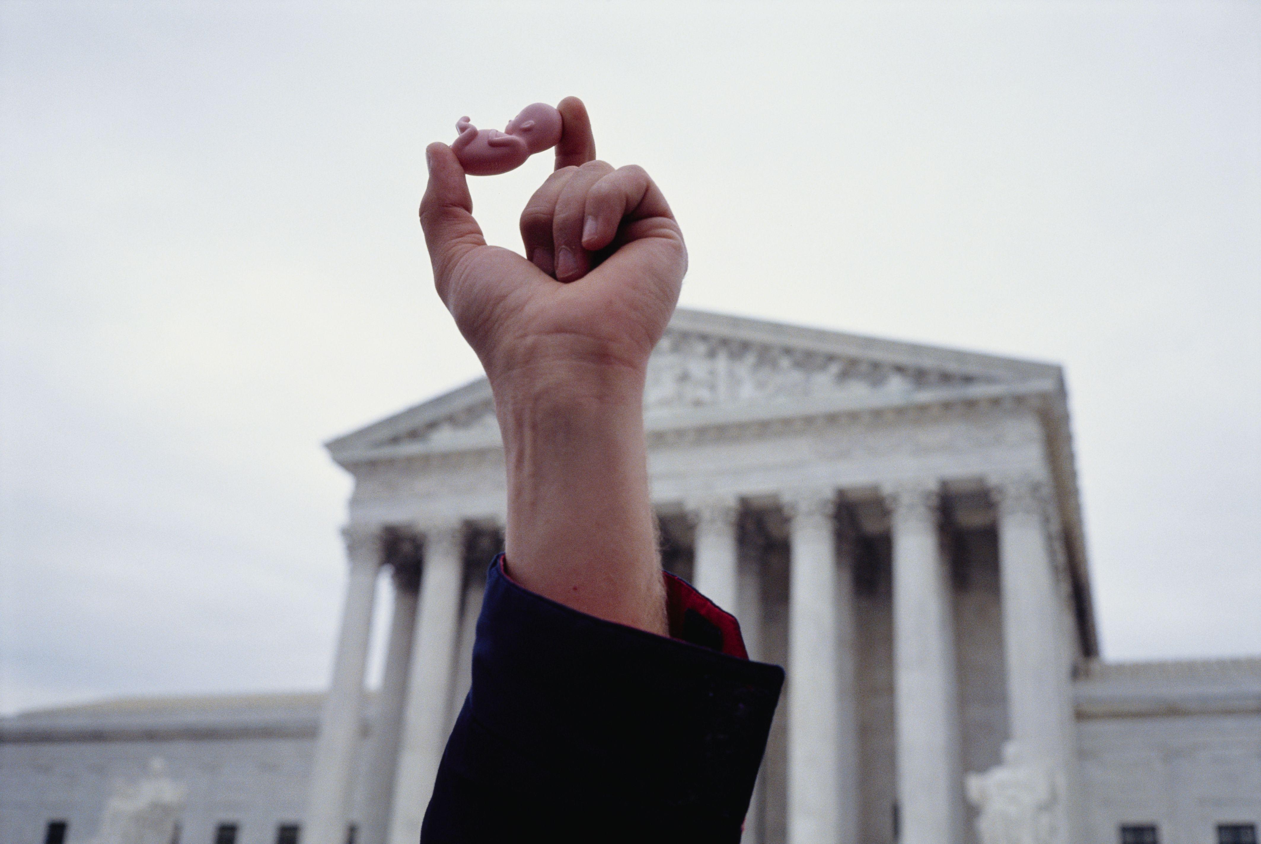 Anti-Abortion Demonstrator Holding Fetus Replica