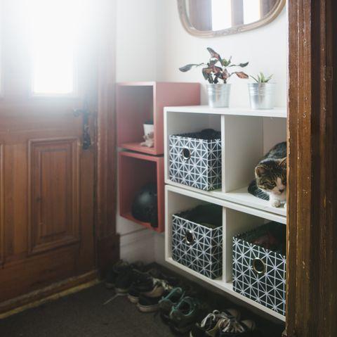 organizer tips storage bins