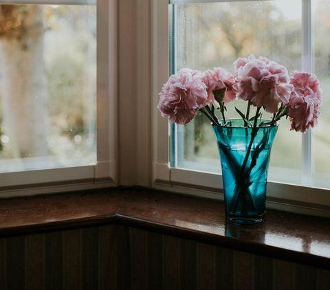 Flower, Pink, Vase, Artificial flower, Cut flowers, Plant, Room, Flowerpot, Window, Bouquet,