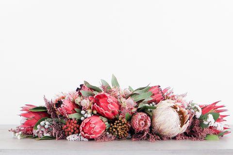 Flower, Cut flowers, Pink, Floristry, Bouquet, Flower Arranging, Floral design, Red, Plant, Protea,