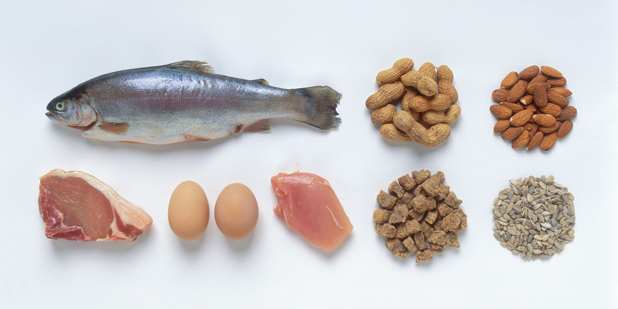 Why a high protein diet isn't just for people who work out