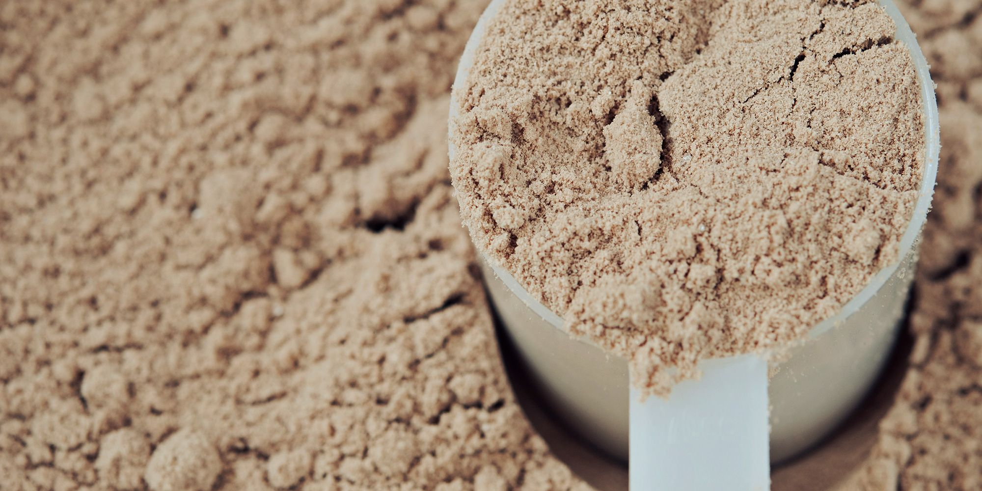 Garden Of Life Protein Powder Review - Why I Bring It Everywhere