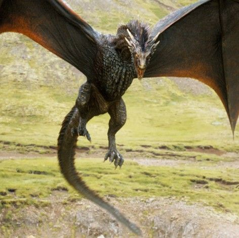 Dragon, Fictional character, Mythical creature, Extinction, Claw,