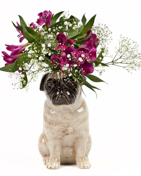 Pug Flower Vase Large