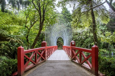 bridge at the pukekura public park, new plymouth, new zealand