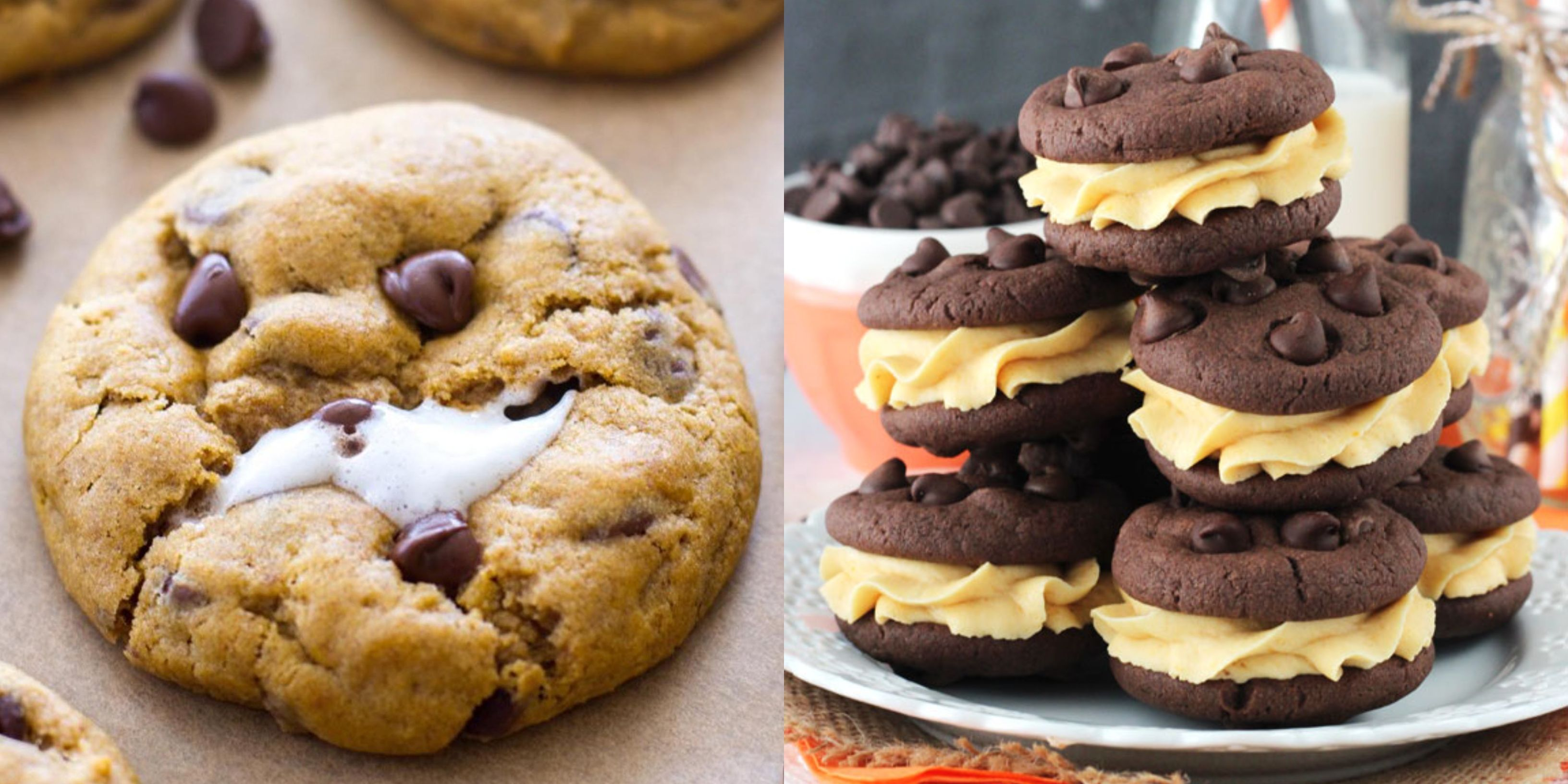 20 Pumpkin Cookies to Bake for Your Family This Fall