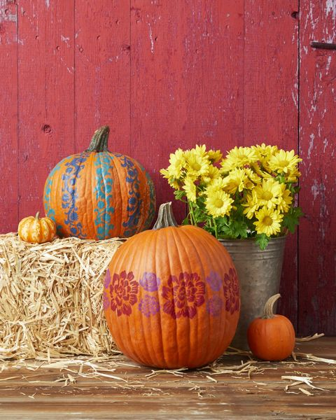 pumpkin decorating ideas floral bands