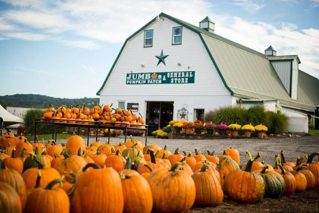 best pumpkin farms near me - jumbo's pumpkin patch maryland