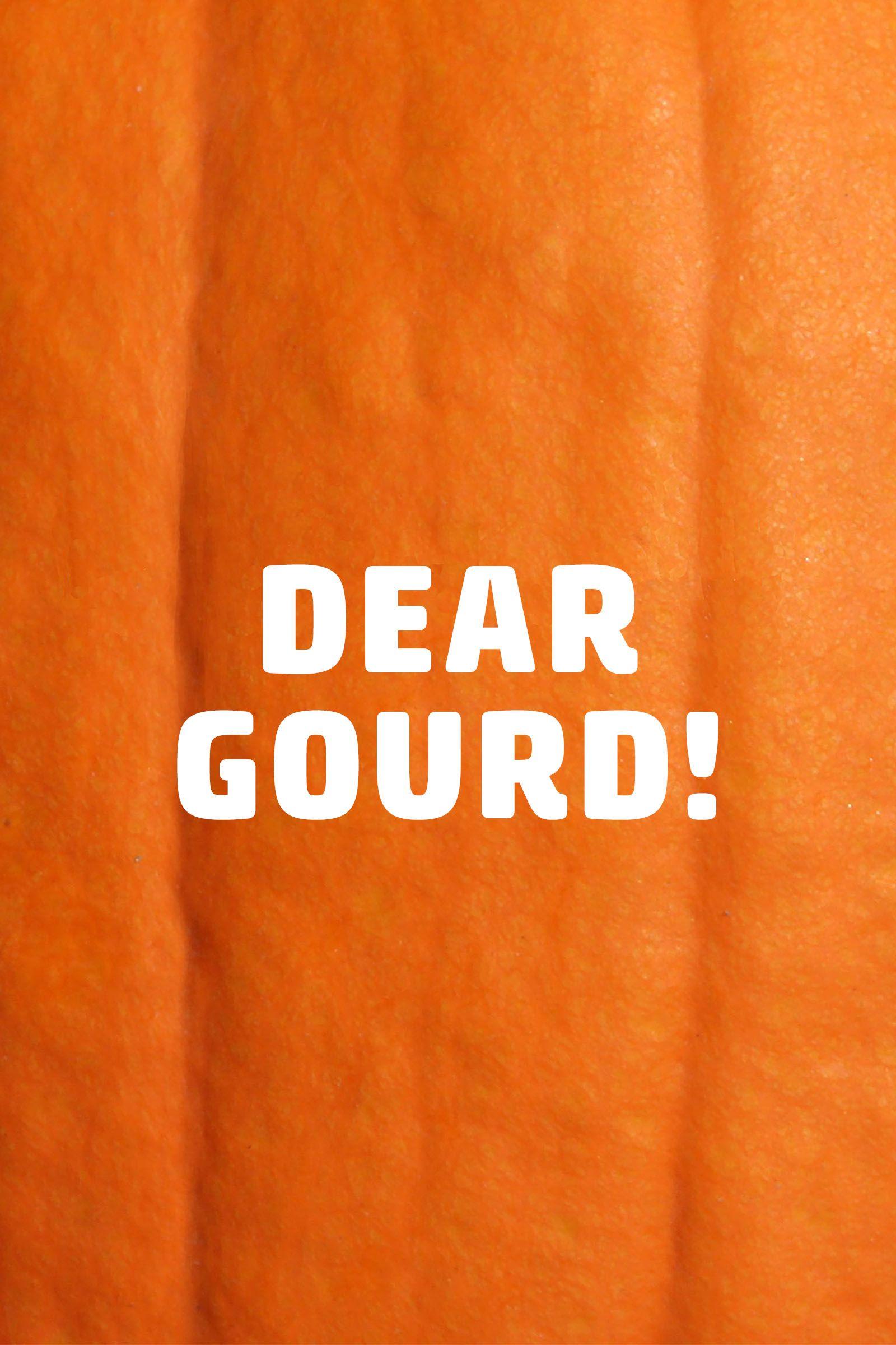 pumpkin puns dear gourd