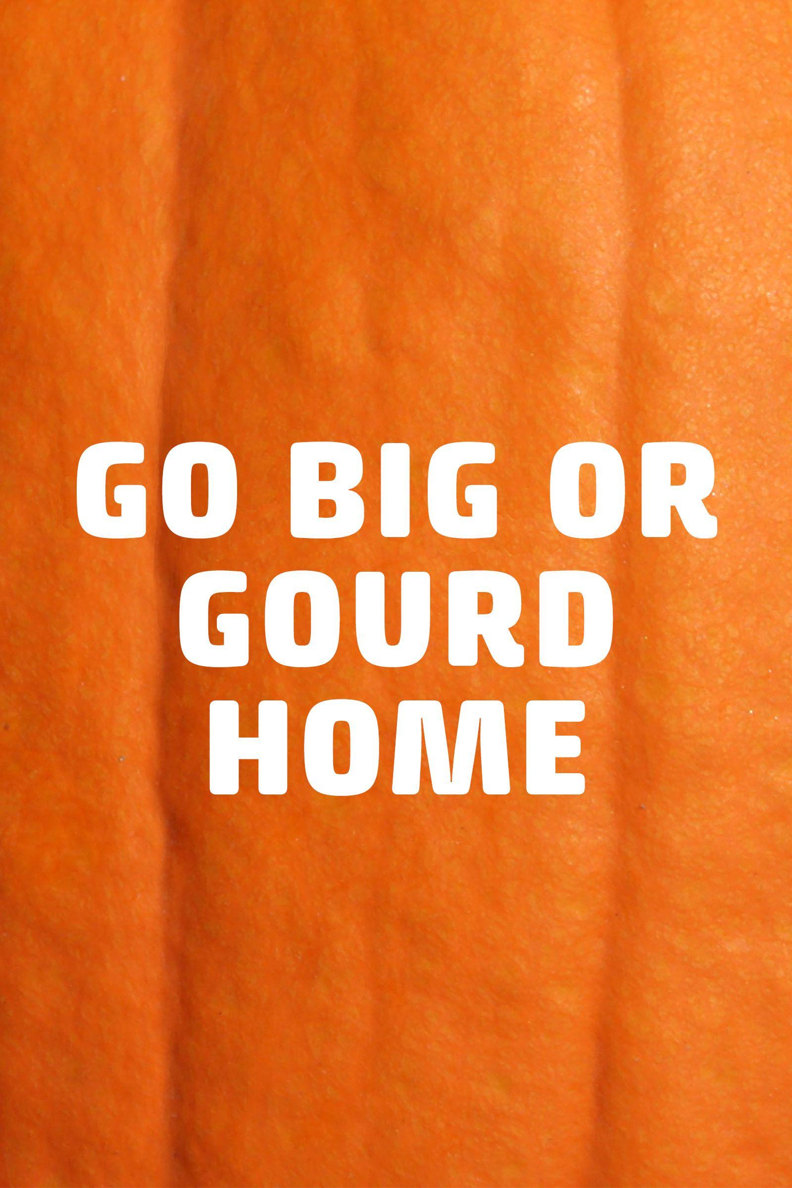 pumpkin puns go big or gourd home