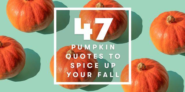 pumplin quotes