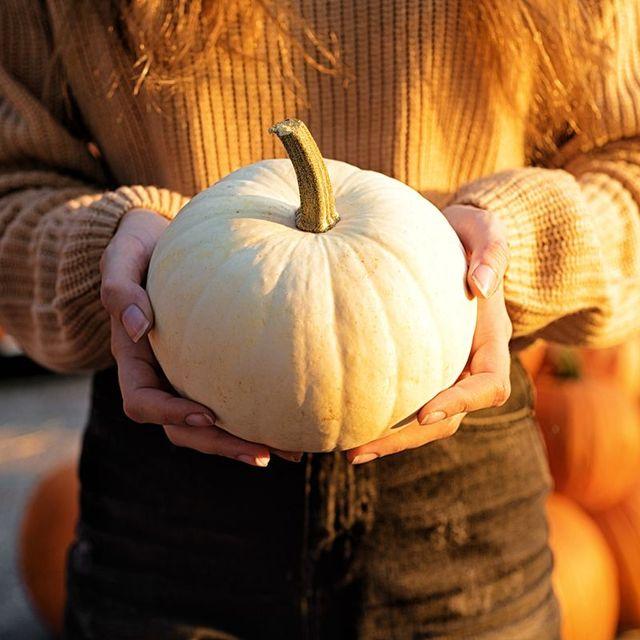 woman in orange sweater holding white pumpkin