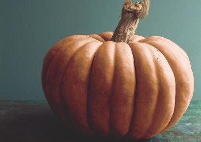 5 Pumpkin Recipes
