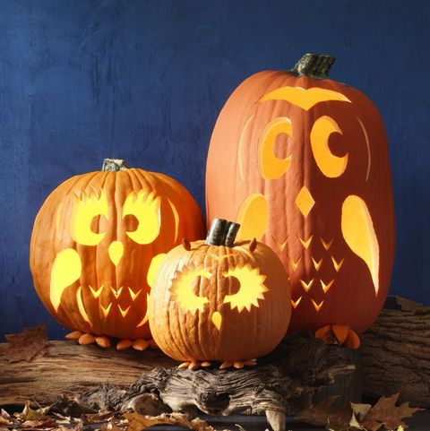 halloween party ideas - owl pumpkins