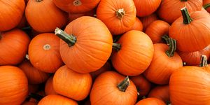 Is Pumpkin a Fruit