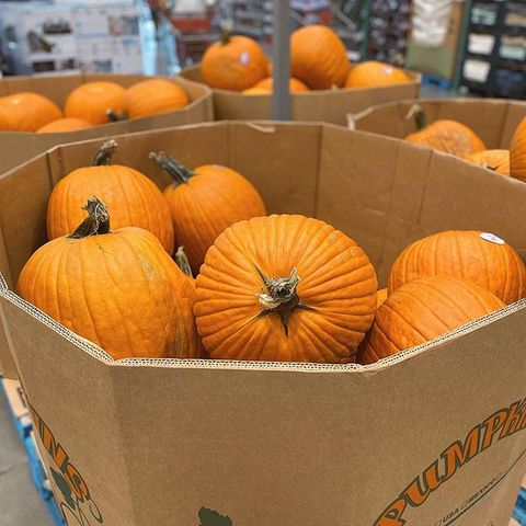 Pumpkin, Natural foods, Winter squash, Local food, Calabaza, Cucurbita, Orange, Vegetable, Whole food, Gourd,