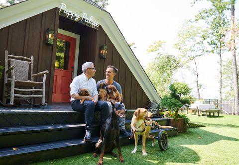 tim and mitchell gold puppy palace